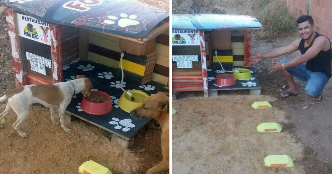 restaurante cachorros de rua