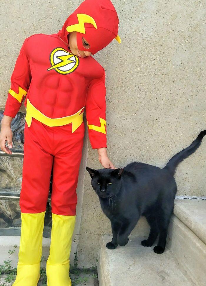 Menino de 5 anos se fantasia de super-herói e ajuda gatos de rua 2