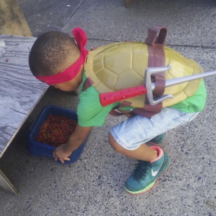 Menino de 5 anos se fantasia de super-herói e ajuda gatos de rua 4