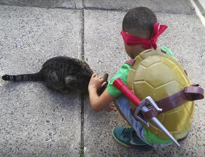 Menino de 5 anos se fantasia de super-herói e ajuda gatos de rua 5