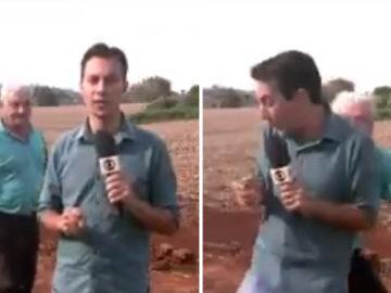 Senhorzinho dá baita susto em repórter durante reportagem sobre onça no Paraná 4