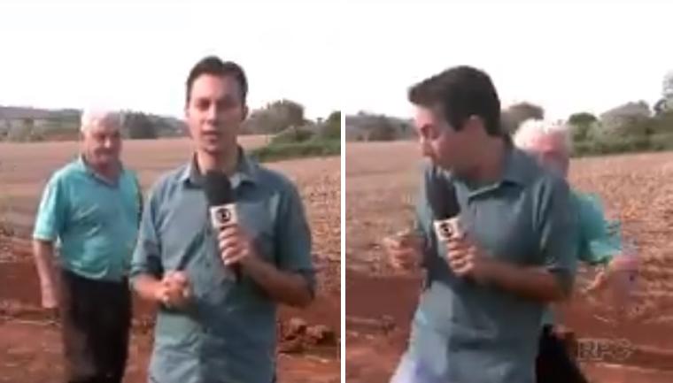 Senhorzinho dá baita susto em repórter durante reportagem sobre onça no Paraná 6
