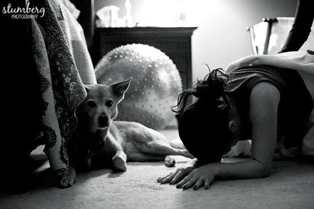 10 fotos apaixonantes de cães acompanhando o parto de suas donas 6