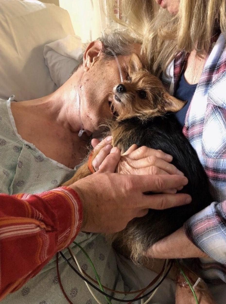 Esposa conta com ajuda de enfermeiras e leva sua cachorra para se despedir de seu marido em hospital 2