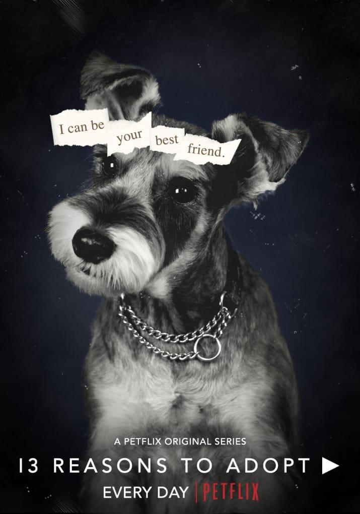 Brasileira recria pôsteres de séries da Netflix com cães para apoiar abrigo de animais nos EUA 4