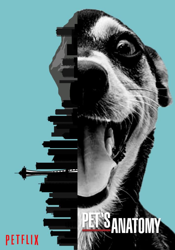 Brasileira recria pôsteres de séries da Netflix com cães para apoiar abrigo de animais nos EUA 5
