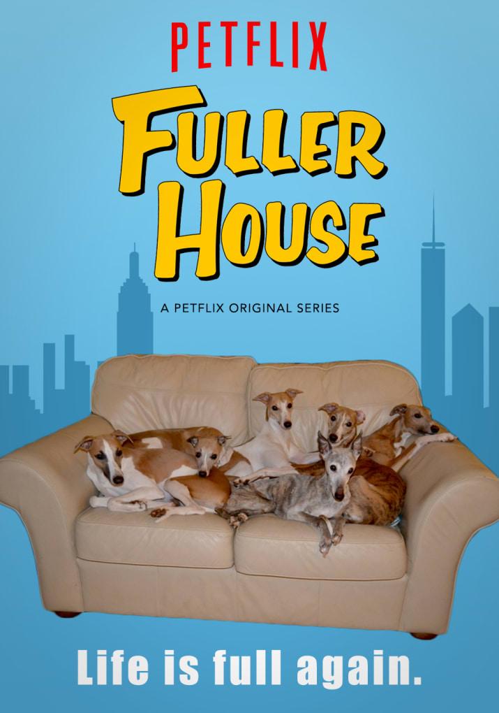 Brasileira recria pôsteres de séries da Netflix com cães para apoiar abrigo de animais nos EUA 6