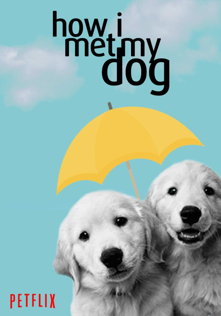 Brasileira recria pôsteres de séries da Netflix com cães para apoiar abrigo de animais nos EUA 7