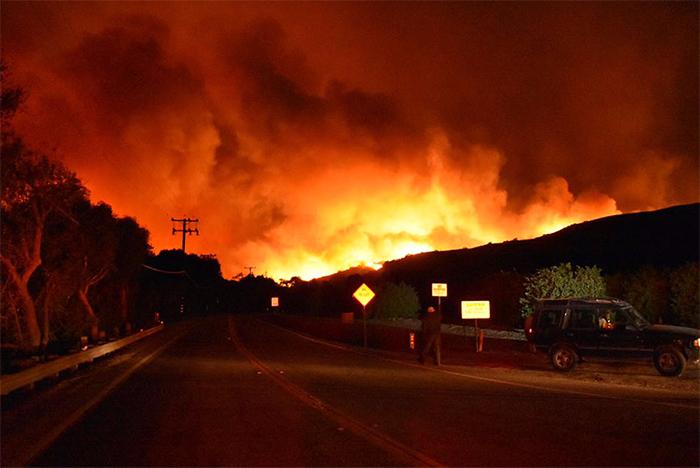 Homem se arrisca em incêndio na Califórnia para salvar coelho selvagem 2