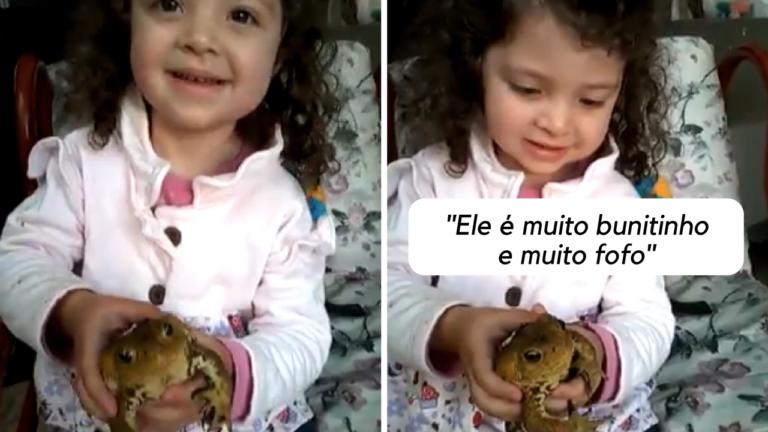 """""""Minha sobrinha achou um sapo no jardim e deu o nome de Tadeu"""" 1"""
