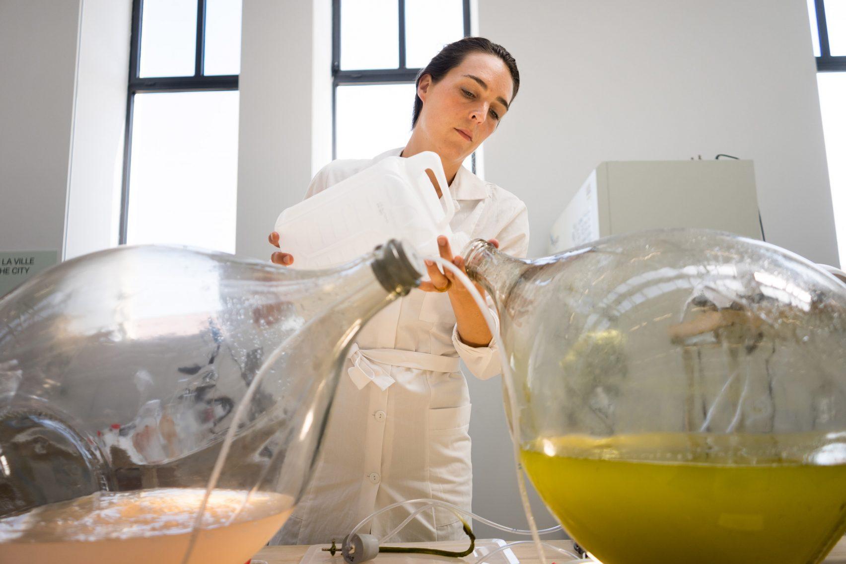 Designers holandeses transformam algas em bioplástico para impressão em 3D 4