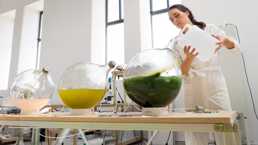 Designers holandeses transformam algas em bioplástico para impressão em 3D 3