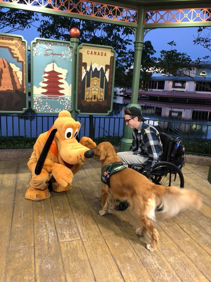 A reação deste cão guia ao conhecer seu brinquedo favorito pessoalmente é só amor 5
