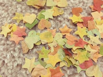 Aprenda a fazer confetes com folhas secas para ter um carnaval sustentável 3