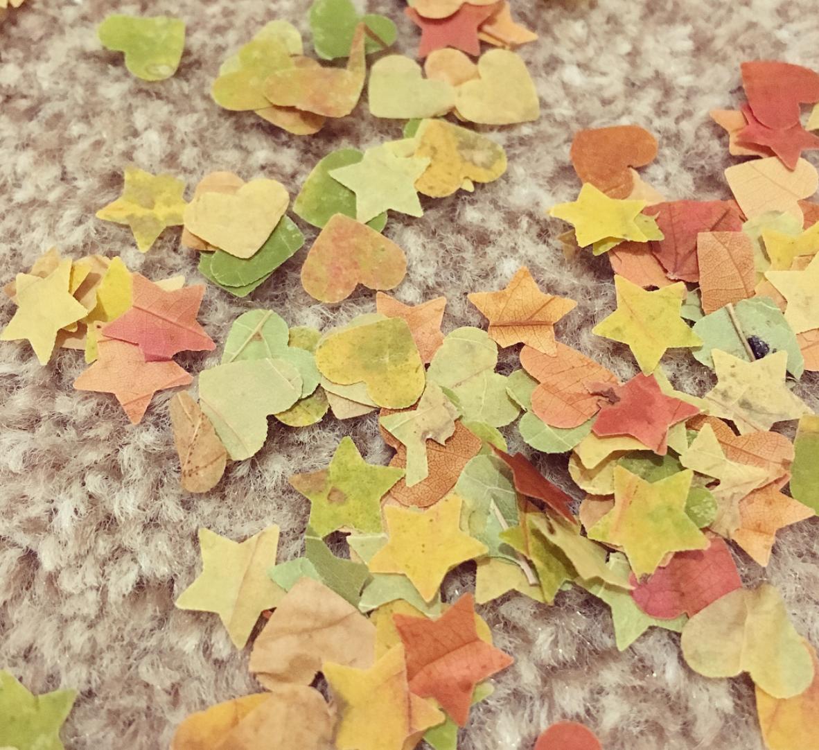 Aprenda a fazer confetes com folhas secas para ter um carnaval sustentável 1
