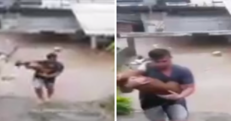 Homem arrisca a vida para salvar cachorra do vizinho que estava em alagamento 1
