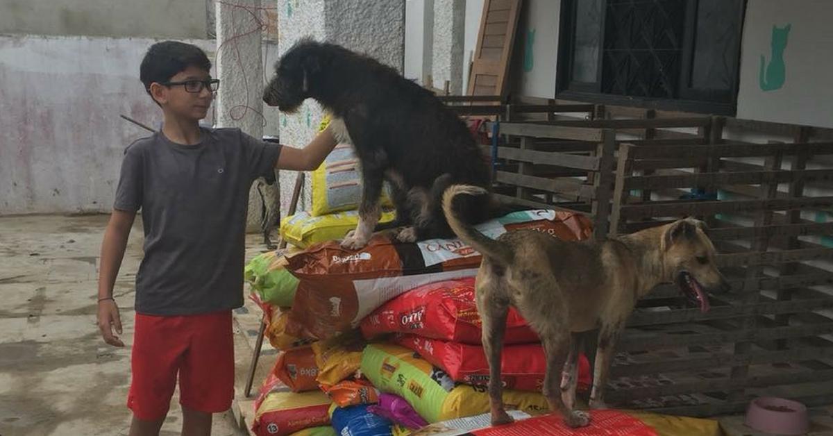 Menino de 12 anos pede de aniversário ração para abrigo de animais 2