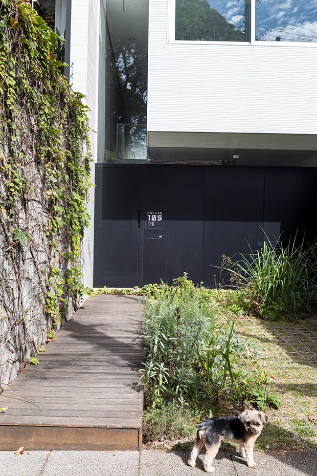 Casal transforma garagem numa horta comunitária em SP e o resultado é maravilhoso 1