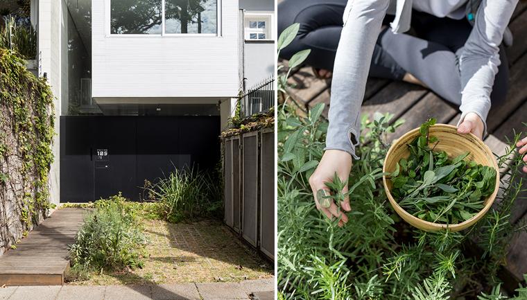 Casal transforma garagem numa horta comunitária em SP e o resultado é maravilhoso 7