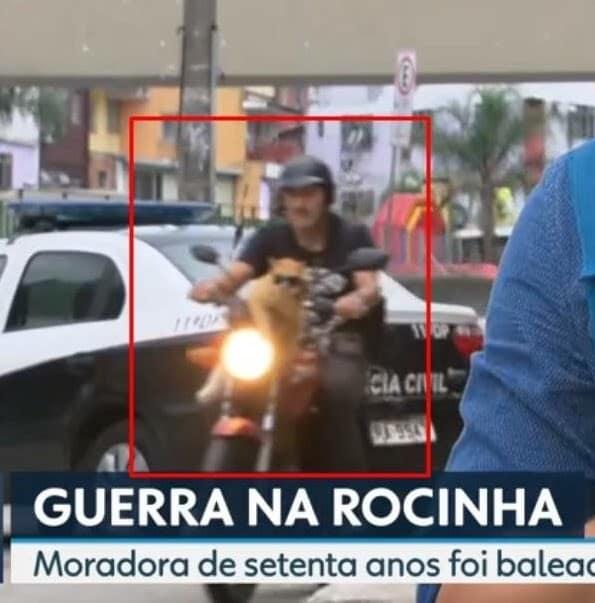Gato com óculos escuros numa moto no Rio é a coisa mais brasileira que pode acontecer 2