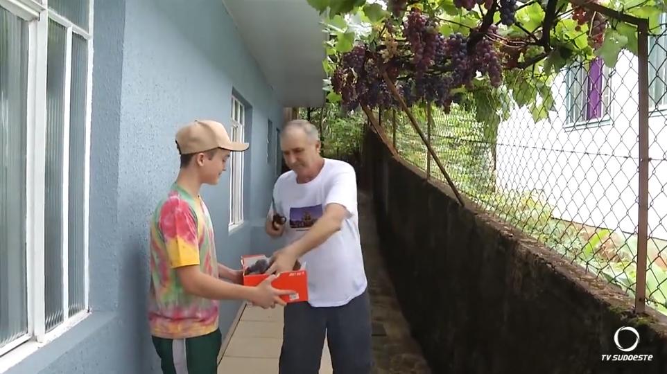 Morador planta videira de 'enfeite' e hoje fornece uva pra toda a vizinhança 6