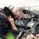 Mulher e sua cachorra lutam juntas contra câncer de mama mostrando que o amor faz toda a diferença 4
