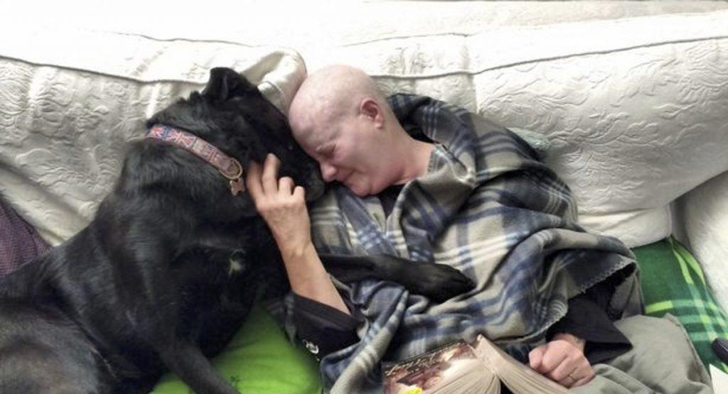 Mulher e sua cachorra lutam juntas contra câncer de mama mostrando que o amor faz toda a diferença 2