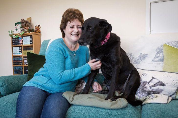 Mulher e sua cachorra lutam juntas contra câncer de mama mostrando que o amor faz toda a diferença 3