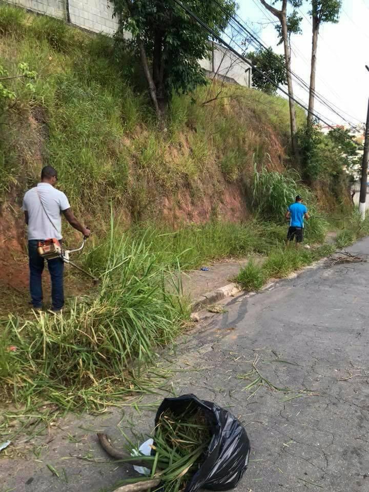 Cansados de esperar, moradores de Cotia fazem mutirão de limpeza em calçada de escola 4