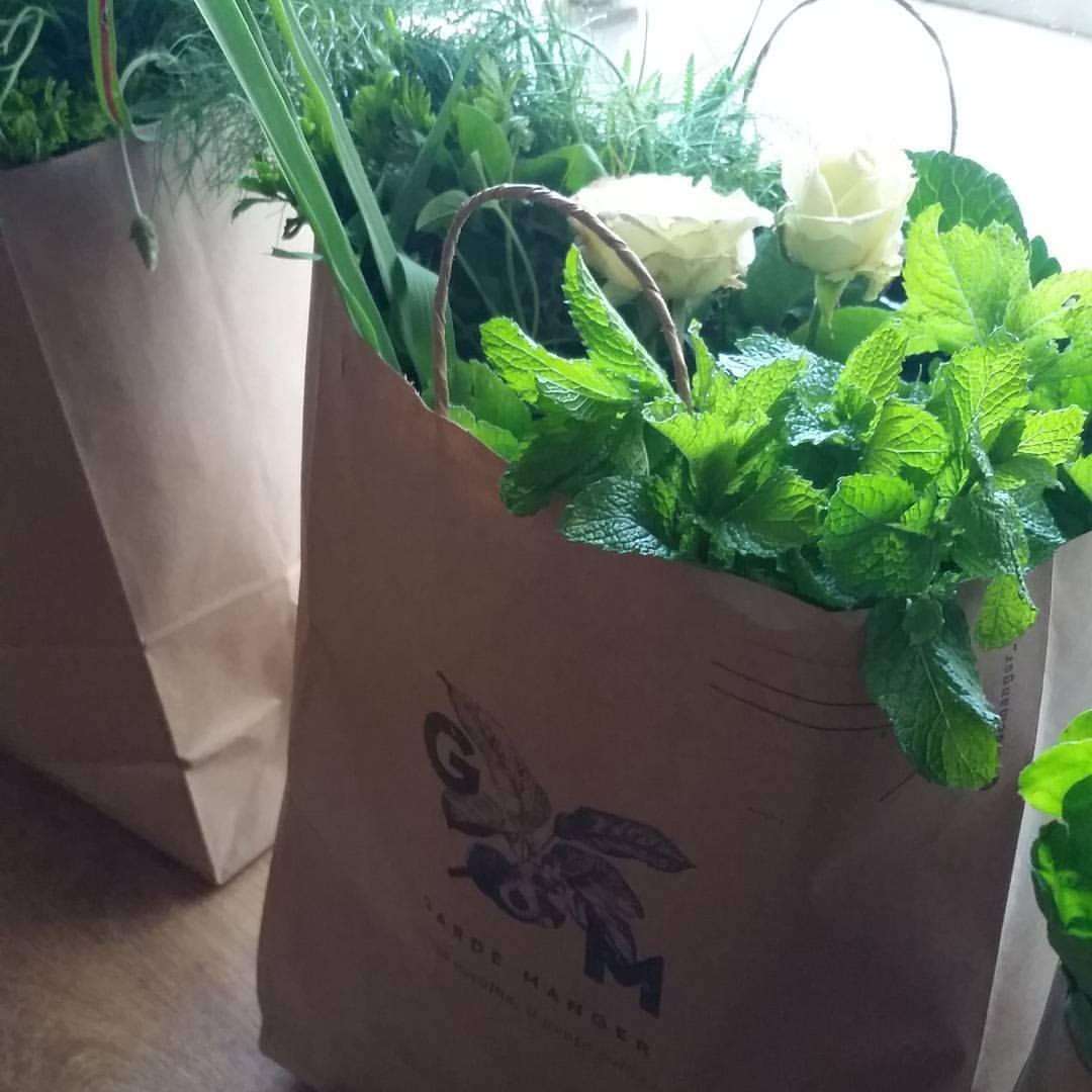 Plataforma online possibilita adotar horta e galinha e receber os alimentos em casa 8