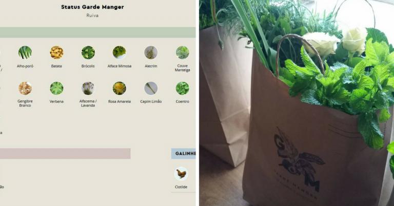 Plataforma online possibilita adotar horta e galinha e receber os alimentos em casa 1