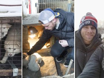 Esquiador e namorado resgatam 90 cães que viviam em fazenda de abate na Coréia do Sul 2