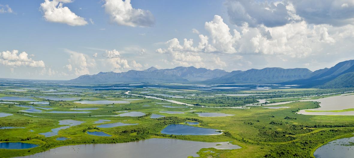 Iniciativa destina R$ 1,6 milhão a projetos de proteção do meio ambiente no Brasil 1