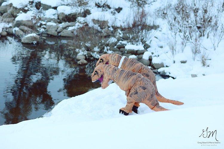 Casal se fantasia de dinossauros para mostrar que o amor não está em extinção 10
