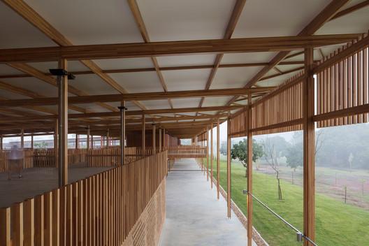 Escola rural de Tocantins ganha prêmio de melhor projeto educacional do mundo 12