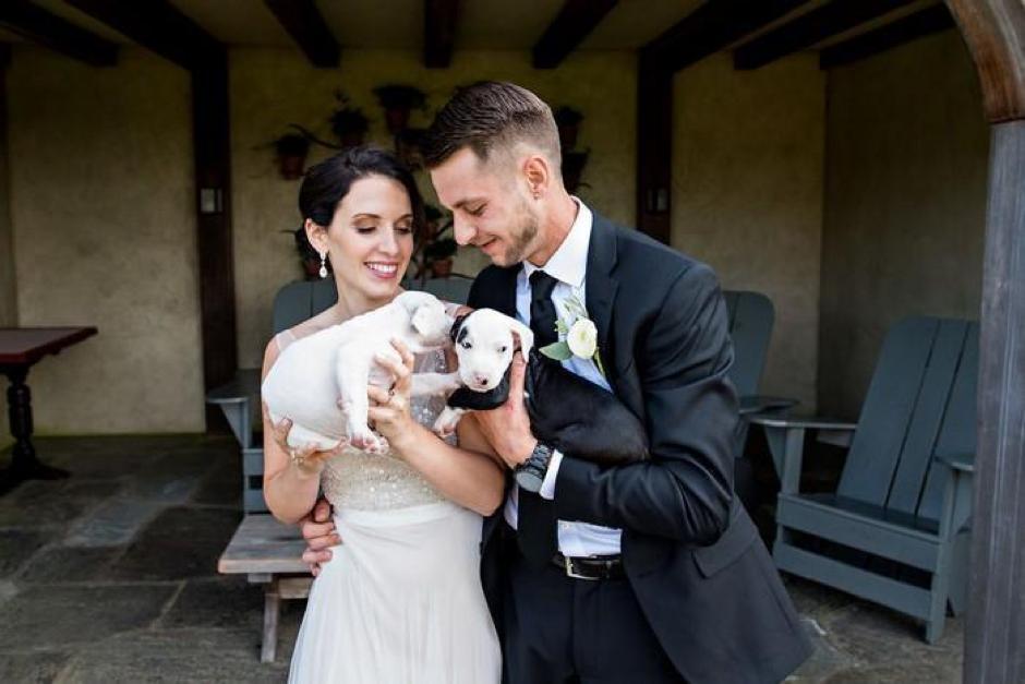 Casal substitui buquê de flores por filhotes para adoção em casamento 2
