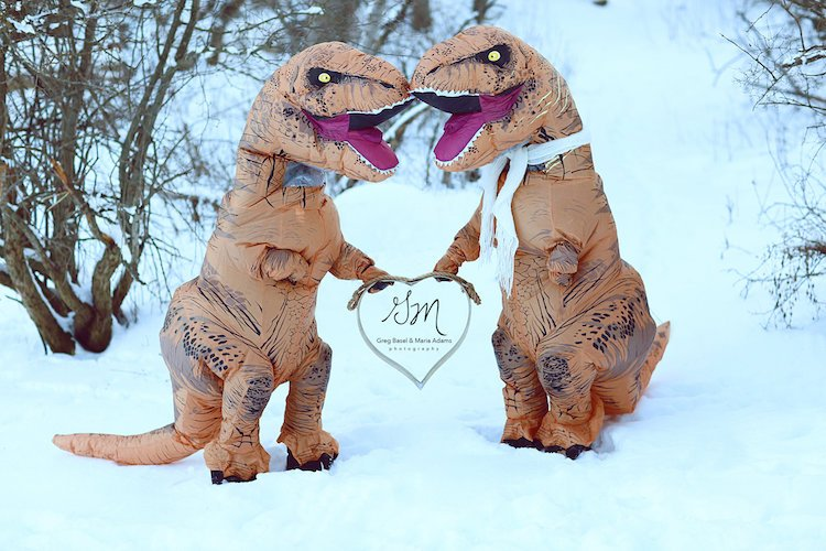 Casal se fantasia de dinossauros para mostrar que o amor não está em extinção 2