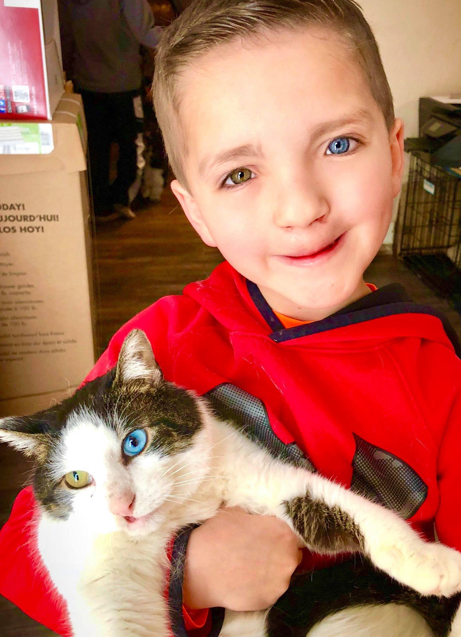 Garoto adota gatinha com as mesmas condições que ele mostrando que suas diferenças são lindas 3