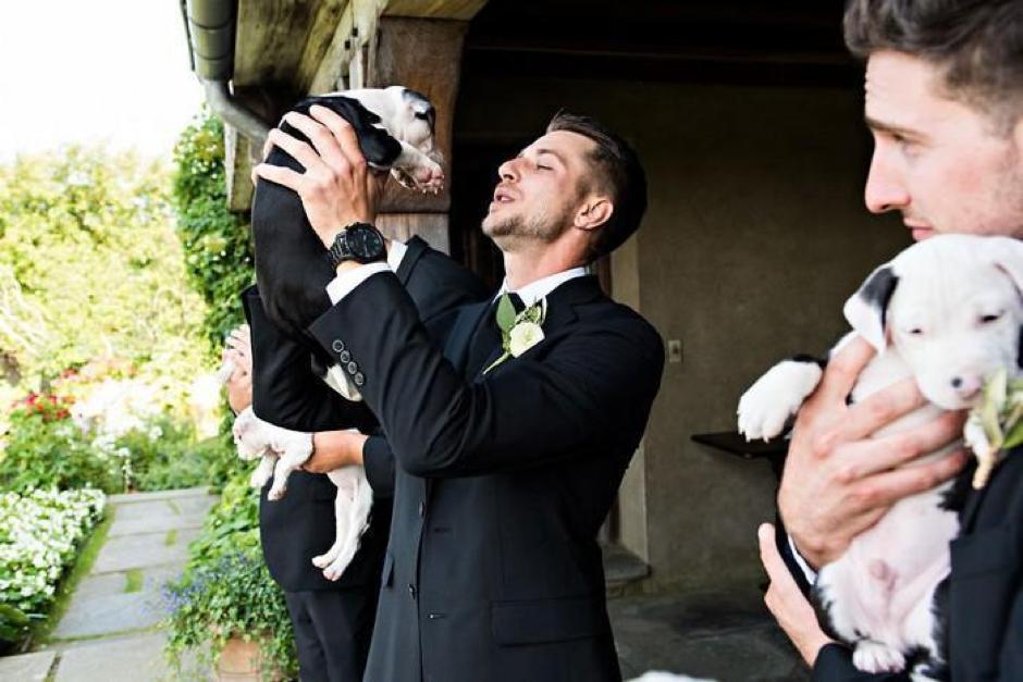 Casal substitui buquê de flores por filhotes para adoção em casamento 7