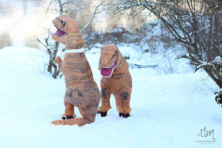 Casal se fantasia de dinossauros para mostrar que o amor não está em extinção 7