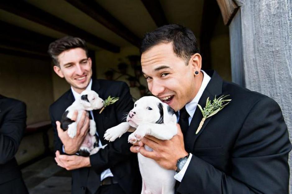 Casal substitui buquê de flores por filhotes para adoção em casamento 9