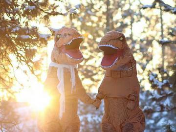 Casal se fantasia de dinossauros para mostrar que o amor não está em extinção 19