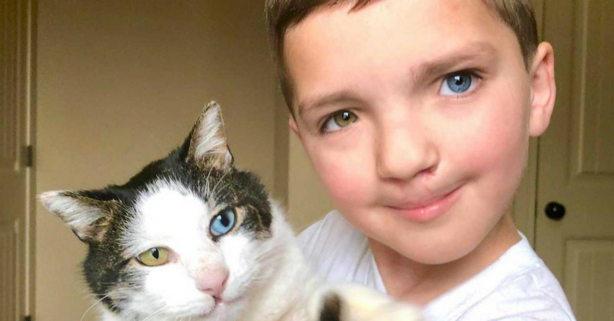 Garoto adota gatinha com as mesmas condições que ele mostrando que suas diferenças são lindas 4