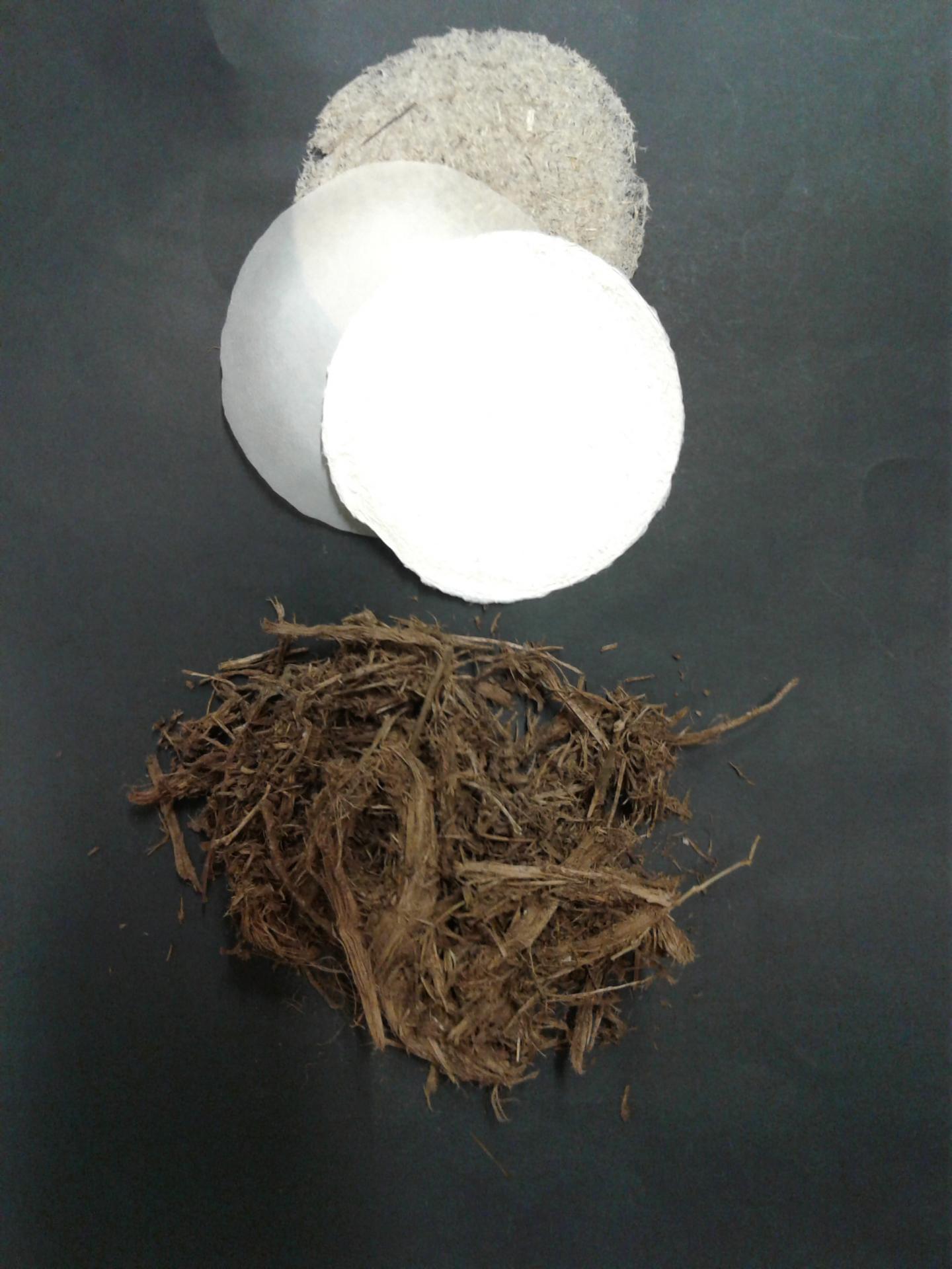 Em vez de árvores, pesquisadores estão produzindo papel feito de estrume 1