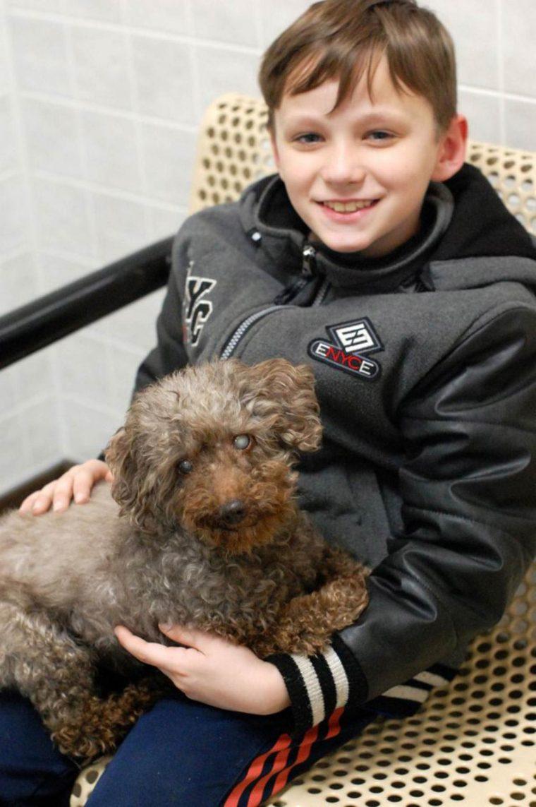 Garoto visita abrigo e adota o cachorro mais velho de todos 3