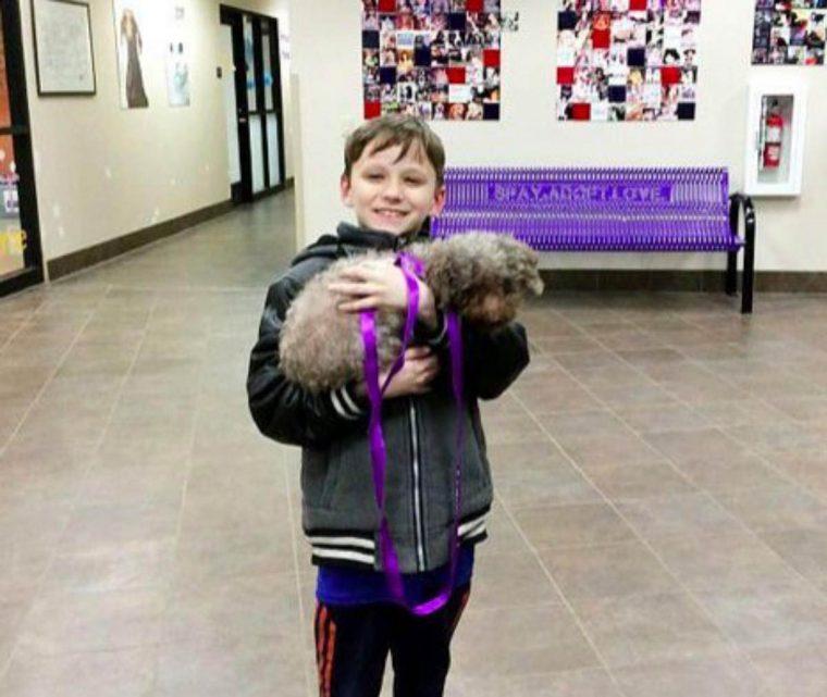 Garoto visita abrigo e adota o cachorro mais velho de todos 4