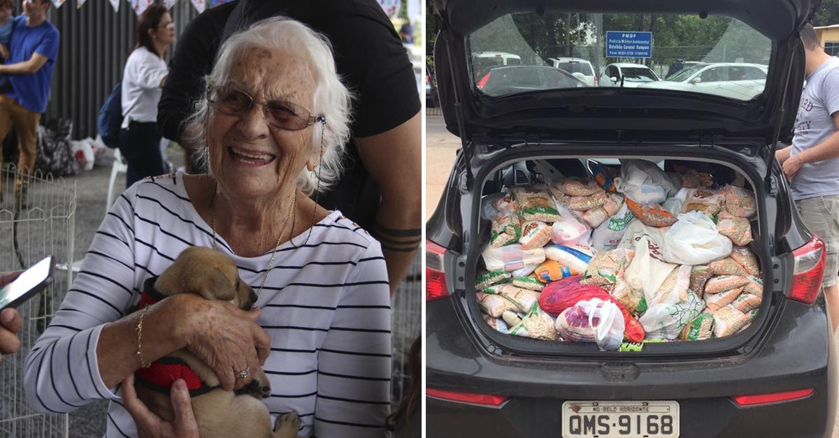 Evento pet arrecada 12 toneladas em doações para moradores de rua e animais em abrigos 2