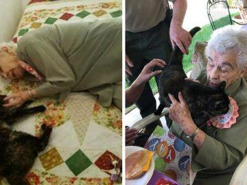 Idosa completa 103 anos e pede pra adotar gatinho de aniversário 8