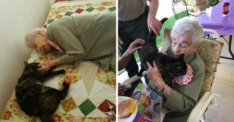 Idosa completa 103 anos e pede pra adotar gatinho de aniversário 1