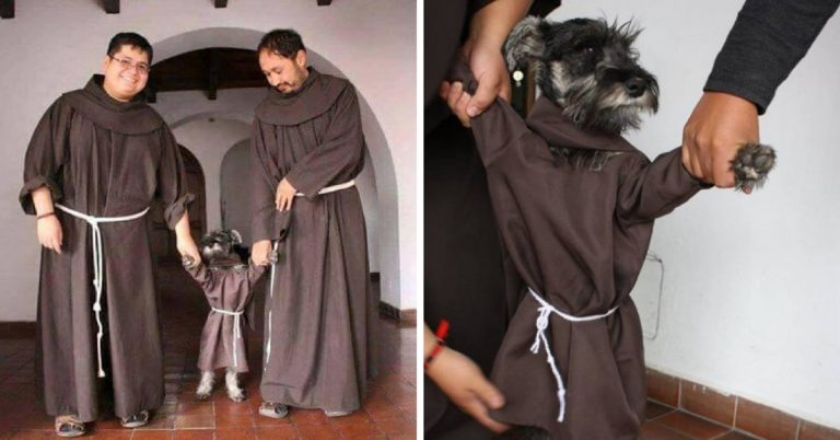 Monges Franciscanos adotam cachorrinho
